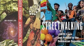 "BAR Book Forum: Ana-Maurine Lara's ""Queer Freedom : Black Sovereignty"" and ""Streetwalking"""