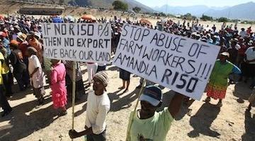 Rural Workers Mobilized in South African General Strike