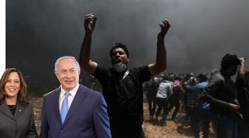 Deafening Silence of Democrats on Gaza Massacre Is Because It's Their Baby Too