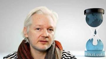 UN Rapporteur on Torture Says Assange Could Die in Prison