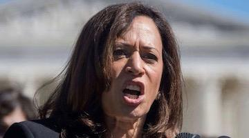 Kamala Harris is the Face of the Democratic Party's Protest Campaign against Bernie Sanders