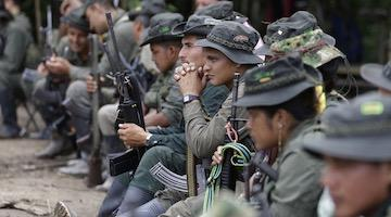 Colombian Government Obstructs the Peace Agreement with the FARC Guerrilla Group