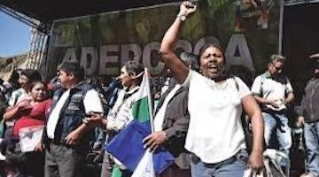 Black Bolivia and the Socialist Electoral Triumph